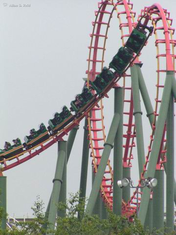 Anaconda photo from Kings Dominion