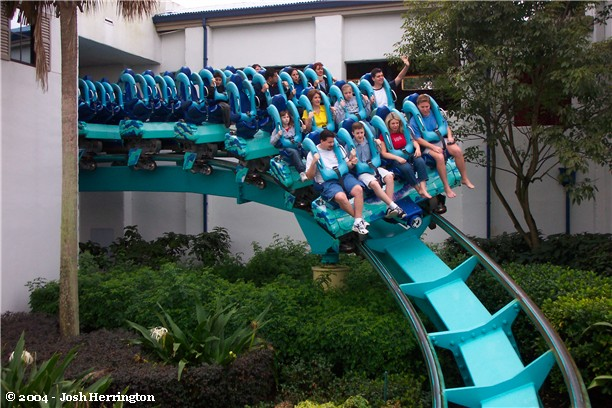 Kraken photo from SeaWorld Orlando