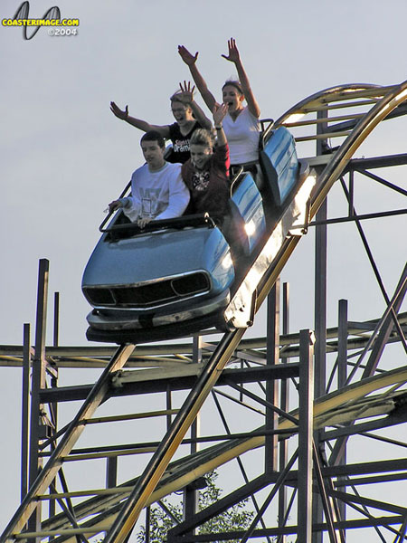 Wildcat photo from Fantasy Island