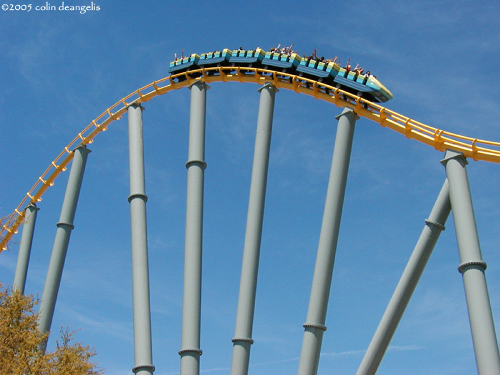 Steel Eel photo from SeaWorld San Antonio