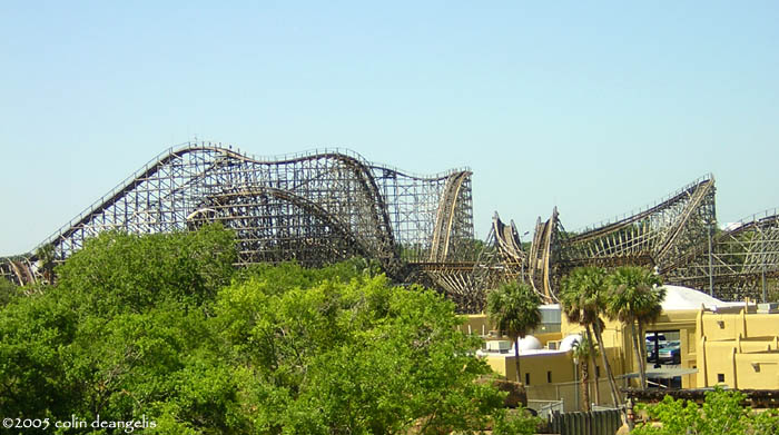 Gwazi (Tiger) photo from Busch Gardens Tampa