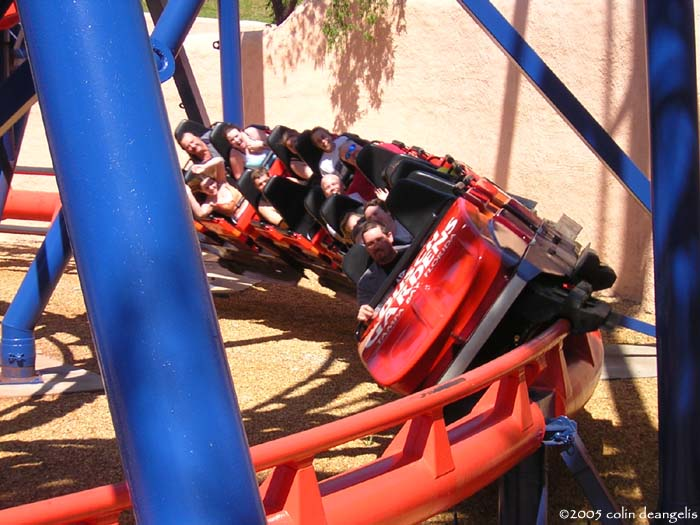 Scorpion photo from Busch Gardens Tampa