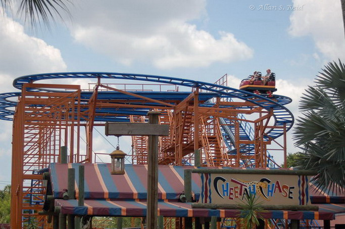 Sand Serpent photo from Busch Gardens Tampa