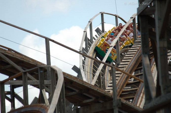 Gwazi (Lion) photo from Busch Gardens Tampa