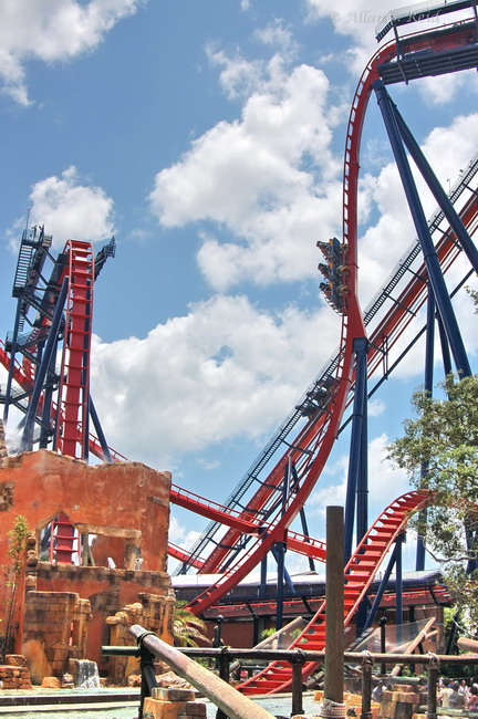 SheiKra photo from Busch Gardens Tampa