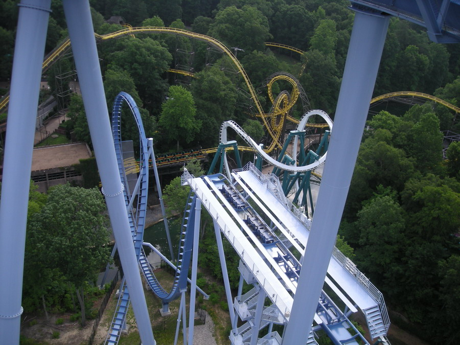Griffon photo from Busch Gardens Williamsburg