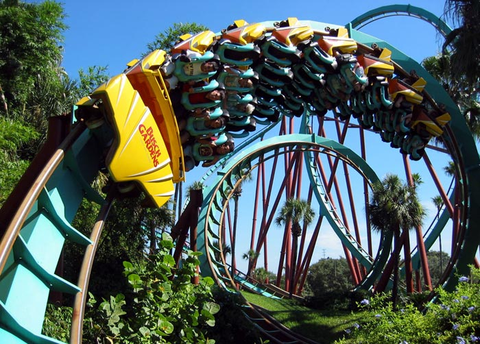Kumba Photo From Busch Gardens Tampa Coasterbuzz
