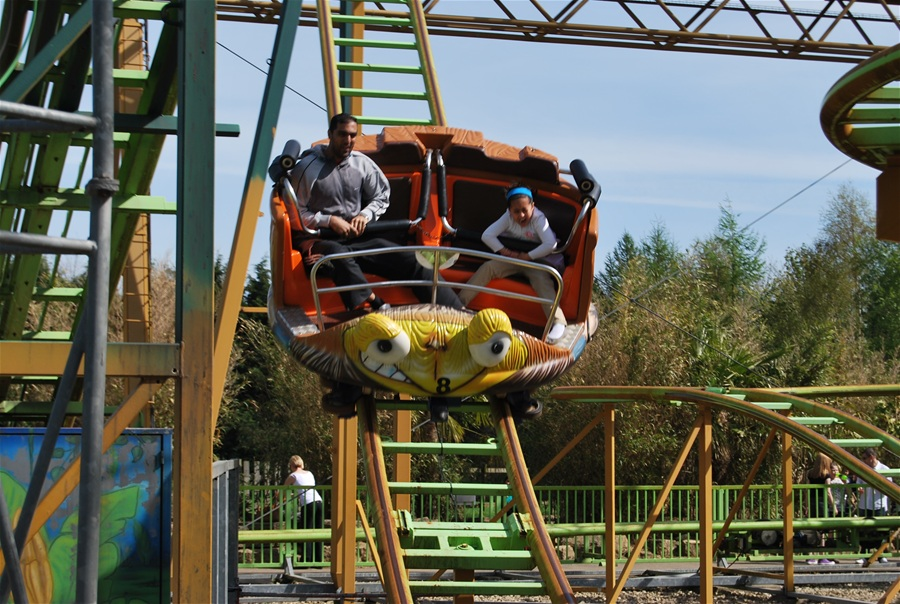 Treetop Twister photo from Lightwater Valley