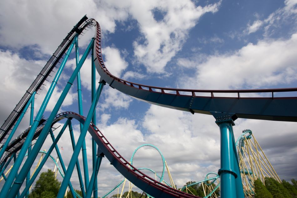 Mako photo from SeaWorld Orlando