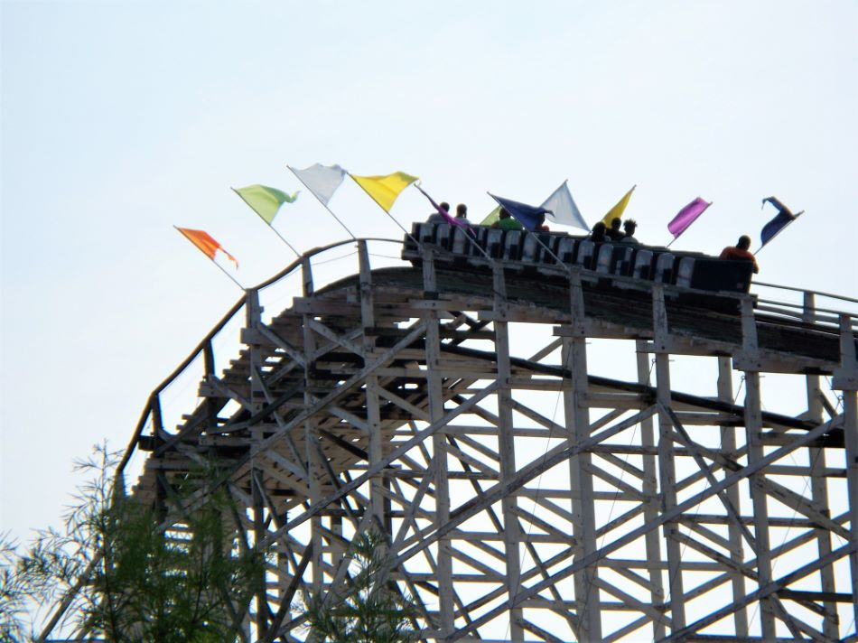 Wild One photo from Six Flags America