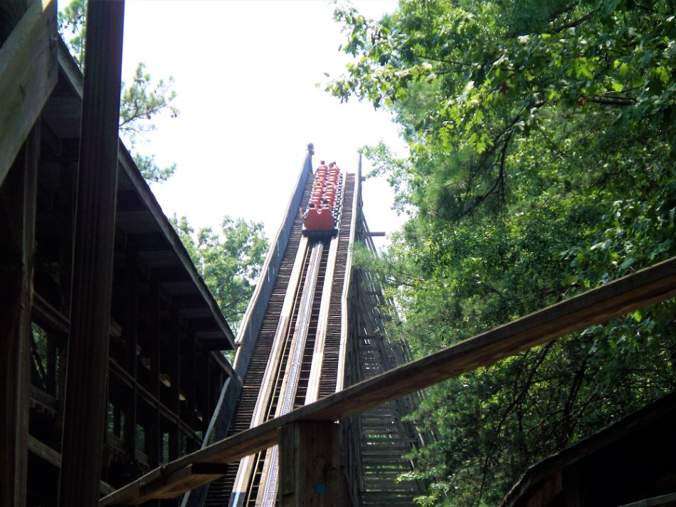 Grizzly, The photo from Kings Dominion