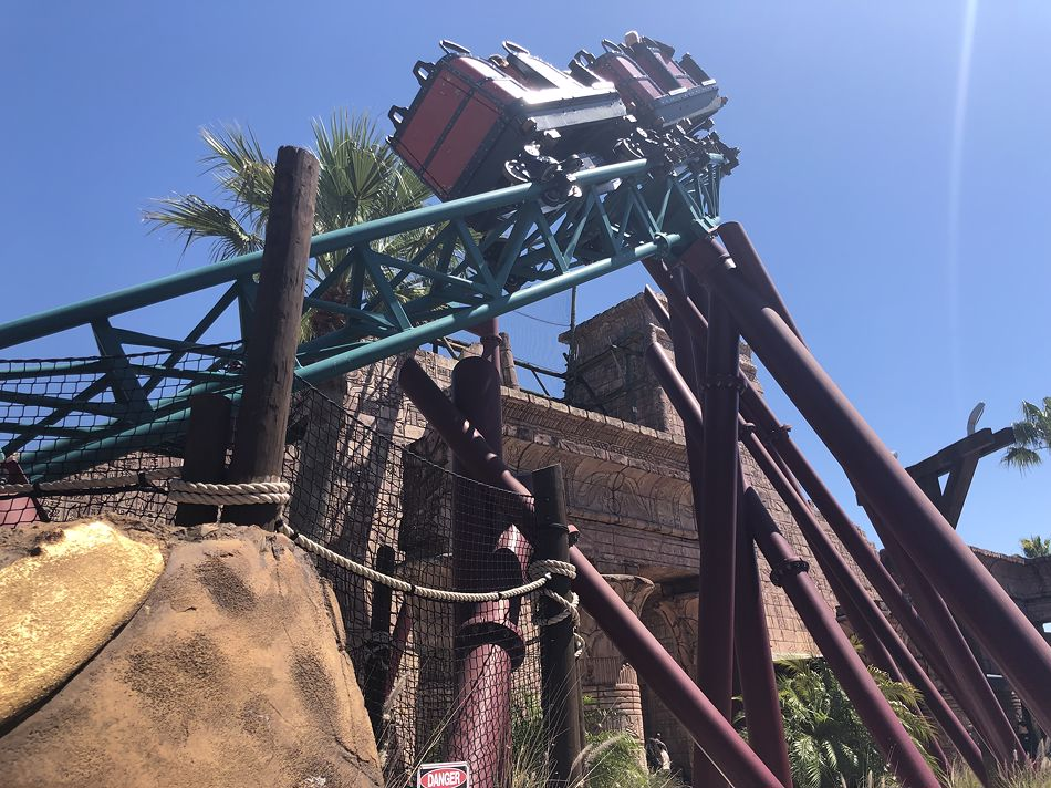 Cobra's Curse photo from Busch Gardens Tampa